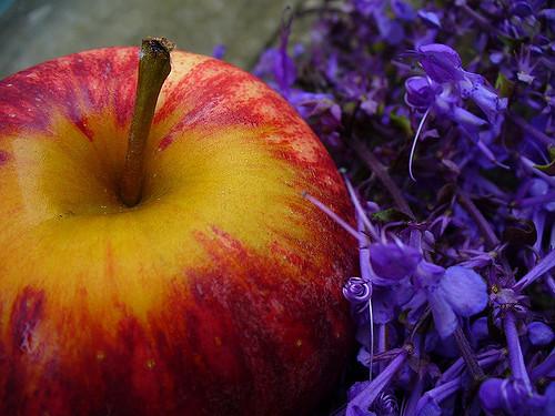Une pomme sur un lit de fleurs violettes.