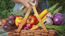 Panier de fruits et légumes frais, pleins de micronutriments.