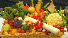 Légumes variés dans un panier.