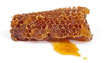 Nid d'abeille rempli de miel.