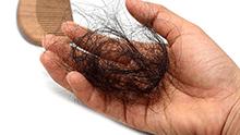 Une poignée de cheveux retirée d'un peigne en bois.